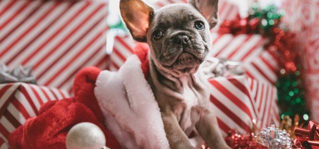 save money for next christmas